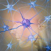 stock photo of psychology  - Human neuron cells in the brain as a medical symbol representing psychology and the science of neurology research in finding treatment for mental health diseases as alzheimer dementia and autism - JPG