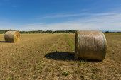 image of threshing  - agricultural landscape and hay bales in the field of wheat threshed - JPG