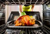 foto of poultry  - Housewife prepares roast chicken in the oven - JPG