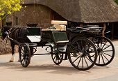 stock photo of shire horse  - Photo of a carriage drawn by a shire horse - JPG