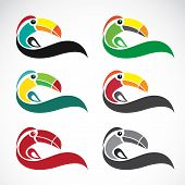 image of toucan  - Vector image of an toucan design on white background - JPG