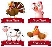 stock photo of turkey-hen  - Illustration of many farm animals posing - JPG