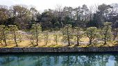 stock photo of shogun  - canal water and tree landscape around nijo castle in Kyoto Japan - JPG
