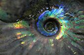 picture of snail-shell  - ammonites fossil as nice natural geology background - JPG