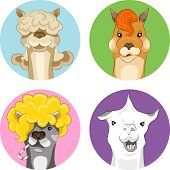 pic of lamas  - Vector illustration set of funny colored lamas - JPG