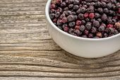 stock photo of elderberry  - freeze dried elderberries in white - JPG