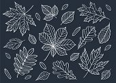 Постер, плакат: Fall of the leaves