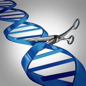 image of genes  - Gene editing health care concept as molecular scissors cutting a dna strand as a medical science and biology technology symbol for changing genetic material to help cure disease - JPG
