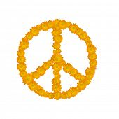 foto of woodstock  - peace symbol - JPG