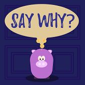 Conceptual Hand Writing Showing Say Whyquestion. Business Photo Text Give An Explanation Express Rea poster
