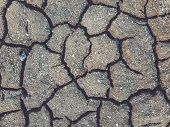 Drought Land Top View Photo. Dry Soil With Fissure Mesh. Dry Land Texture poster