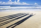image of crew cut  - Close up of the shadows of five people with their arms in the air on the beach in late afternoon sun - JPG