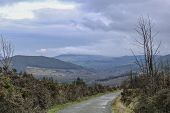 The Road Stretches Into The Distance. Flora Of Ireland. Nature Reserve. Landscape In The Mountains. poster