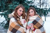 Girls Girlfriends In Winter On Background Of Snow And Green Christmas Trees, Happy Warm With Warm Bl poster