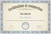 picture of prospectus  - illustration of certificate template with floral frame - JPG