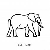 Elephant Outline Logo Minimalistic Logo, Simple Vector Illustration Of The Elephant. poster