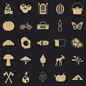 Hiking In The Wilderness Icons Set. Simple Set Of 25 Hiking In The Wilderness Vector Icons For Web F poster