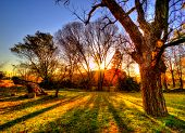 picture of condolence  - sunset over the farm in Johannesburg gilloolys - JPG