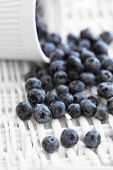 stock photo of backround  - Ripe blueberries in jar on a white backround - JPG