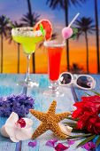 Cocktails margarita sex on the beach colorful tropical palm tree sunset sky with flowers and starfis