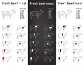 picture of flank steak  - Icon set for packaging and info  - JPG