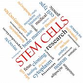 image of fibroblast  - Stem Cells Word Cloud Concept angled with great terms such as research human medical and more - JPG
