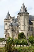 pic of anjou  - Castle of Saumur in Loire Valley France - JPG