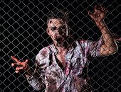 image of creepy  - Creepy zombie behind the fence - JPG