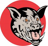 picture of razorback  - vector illustration of a wild pig - JPG