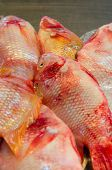 image of red snapper  - red snapper fish with ice at market - JPG