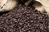 picture of coffee crop  - coffee beans are poured from a linen bag - JPG
