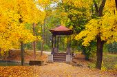 stock photo of gazebo  - Autumn Landscape with Gazebo in the Park - JPG