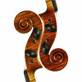 image of musical instrument string  - images were taken for my musical instrument series - JPG