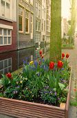 Постер, плакат: street of Delft Holland