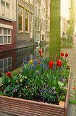 Постер, плакат: street of Delft Holland