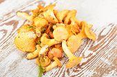 foto of chanterelle mushroom  - Chanterelle mushroom on textured vintage wooden background - JPG