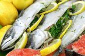 picture of redfish  - Dish With Fresh Stuffed Fish Salmon Steaks Lemon Slice And Herbs Close - JPG