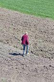 picture of hoe  - Senior farmer with hoe walking on fertile land - JPG