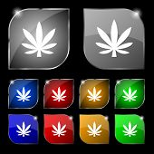 foto of marijuana leaf  - Cannabis leaf icon sign - JPG