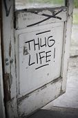 stock photo of thug  - Thug Life Graffiti on old weathered door - JPG