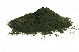 stock photo of chlorella  - Green chlorella. detox superfood. close - up ** Note: Shallow depth of field - JPG
