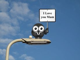 image of lamp post  - Comical bird with I Love you Mum sign sat on a lamp post against a blue sky background  - JPG