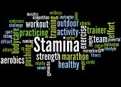 Stamina Is Staying Power Or Enduring Strength, Word Cloud 5 poster