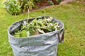Garden Weed Bag poster