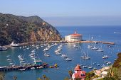Avalon Bay. Catalina, California