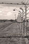 stock photo of auschwitz  - Fence at Auschwitz Birkenau concentration camp in Poland.
