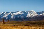 Autumn In Mountain Valley. Mountain Range And Yellow Forest On Horizon poster