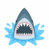 Shark With Open Mouth. Shark Isolation On A White Background. Flat Vector poster