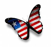 Liberia Flag Butterfly, Isolated On White