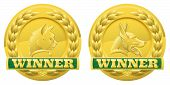 stock photo of alsatian  - Gold cat and dog pet winners medals for pet shows or for pet related product reviews or other cat and dog pet competitions - JPG